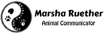 Marsha Ruether | Animal Communicator